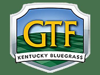 GTF Kentucky Bluegrass
